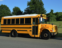 Updates on the OPT busses in 2020
