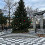 Christmas Tree in Athens Square Park (next to the LD)